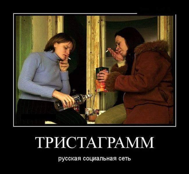 Тристаграмм, русская социальная сеть