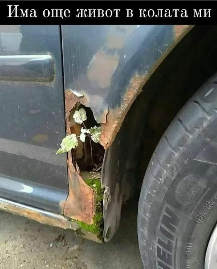 Има още живот в колата ми