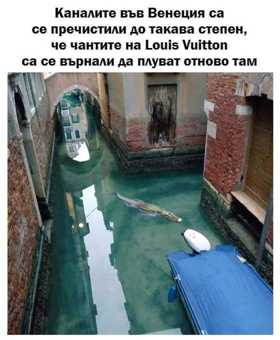 Каналите във Венеция са се пречистили до такава степен. че чантите Louis Vuitton са се върнали да плуват отново там
