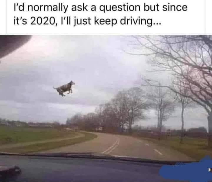 Нормално бих започнал да задавам въпроси, ама понеже е 2020 просто продължавам да карам...