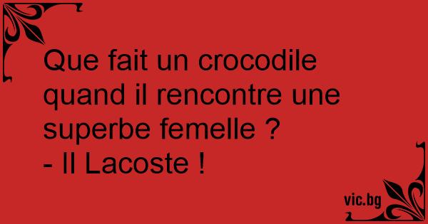 que fait un crocodile mâle qui rencontre un crocodile femelle