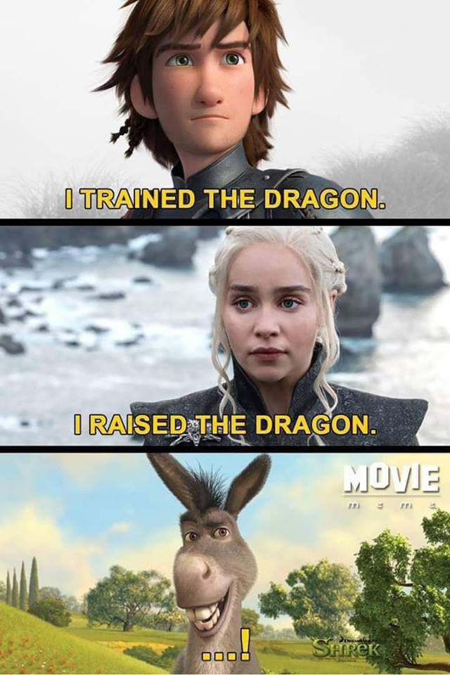 - I trained the dragon